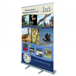 "Triad 48"" wide Retracting Banner Stand"